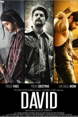 David - Hindi (2013)