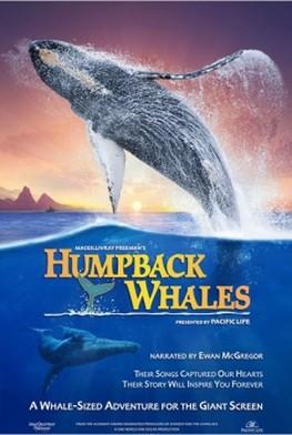 Humpback Whales (2015)