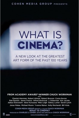 What Is Cinema? (2014)