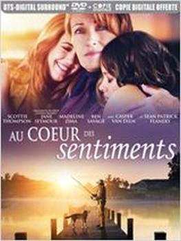 Au coeur des sentiments (2012)