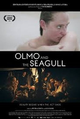 Olmo and The Seagull (2014)