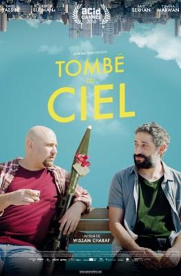 Tombé du ciel (2016)