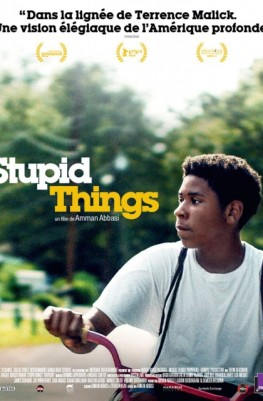 Stupid Things (2017)