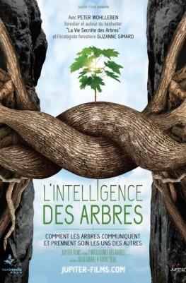 L'Intelligence des Arbres (2016)
