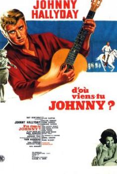 D'où viens-tu, Johnny ? (2018)