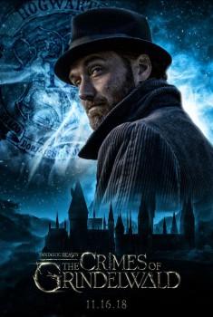 Les Animaux fantastiques 2 - Les crimes de Grindelwald (2018)