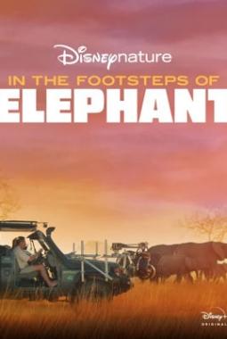 Sur la route des éléphants (2020)